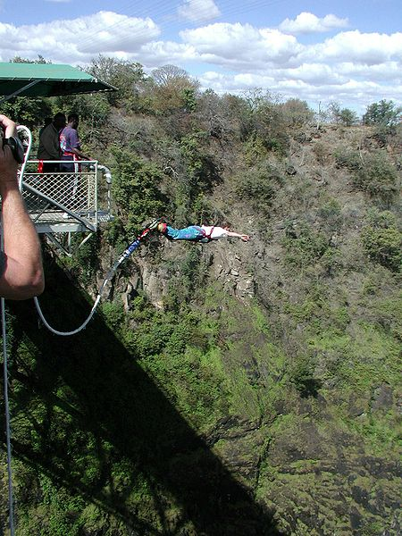 Bungee Jumping over Victoria Falls