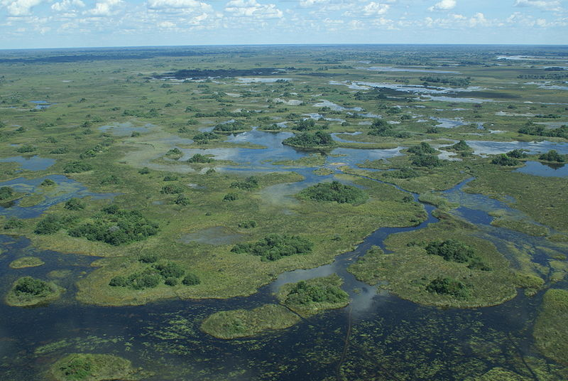 View of the Okavango Delta