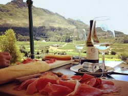 Wine Routes of South Africa Foods and Wine